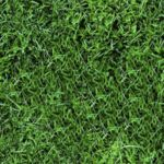 Textures: Lawn