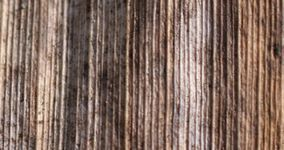 Textures: old wood dark and strongly ribbed